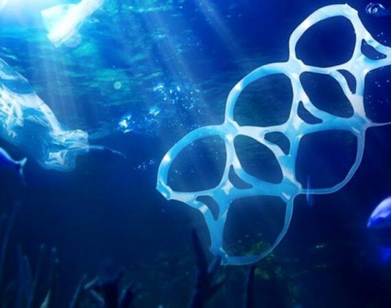 La plastica in mare non sia rifiuto speciale.